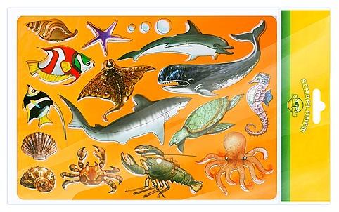 "Трафарет School Point ""Marine animals"""