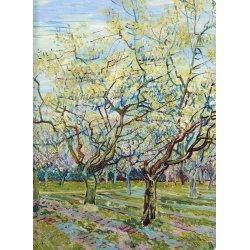 "Тетрадь""Van Gogh"" В5/48л, мягк.обл, кл., скрепка"