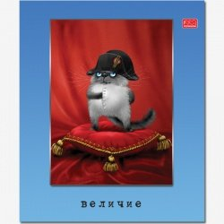 "Тетрадь общ,  48л., А5, ""Кот.Состояние души"", клетка,лак"
