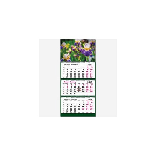 """Календарь трехсекционный 2018 г. """"Цветы. Ирисы"""""""