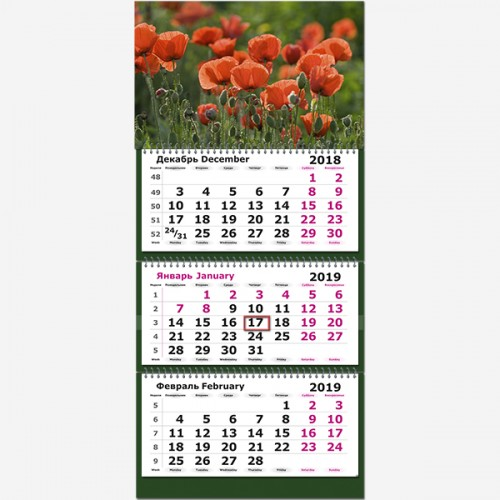 """Календарь трехсекционный 2019 г. """"Цветущие маки"""""""